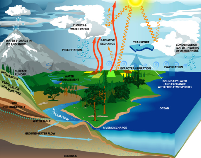 The water cycle is illustrated here. Water is constantly moving on Earth.  The water cycle consists of all the processes involved in the transfer and storage of water in Earth's atmosphere, on its surface, underground, and by organisms living on our planet.